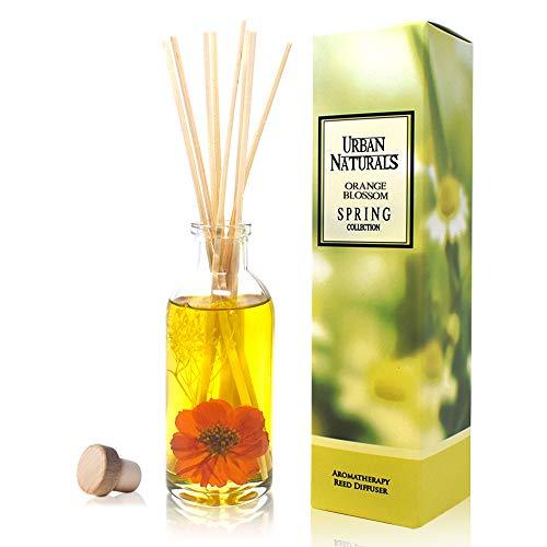 Urban Naturals Orange Blossom Oil Reed Diffuser Sticks Gift Set | Orange Flower, Petitgrain, Lime, Orange, Grapefruit & Vanilla | Long Lasting Scent for The Bathroom, Kitchen, Bedroom or Living Room