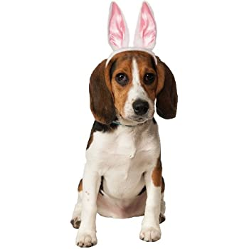 Rubies Costume Company Bunny Ears for Your Pet, Medium/Large