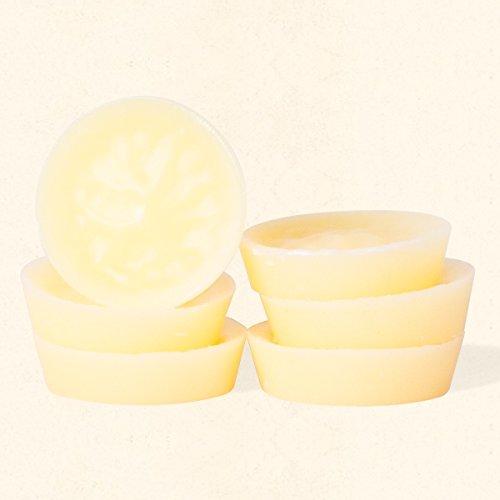 Lemon Cookie Mini Melts – 6パッケージの3 B01LHYEBU2