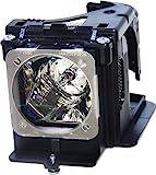 BenQ Multimedia Projector Replacement Lamp (5J.J2H01.001)