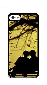 Hard Case Back Custom PC iphone 5c case for men - AbstractTurquoiseTealsilverTwoBirdsinaTreePainting