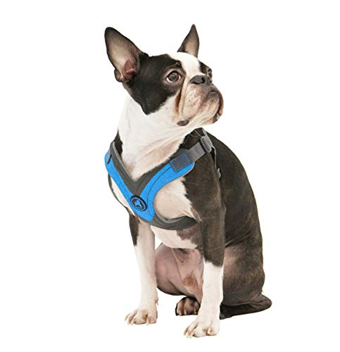 - Gooby - Trekking Harness, Small Dog Fleece Lined Harness with Memory Foam Padding, Blue, Small