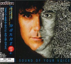 Shape of Your Voice (+1 Bonus Track)
