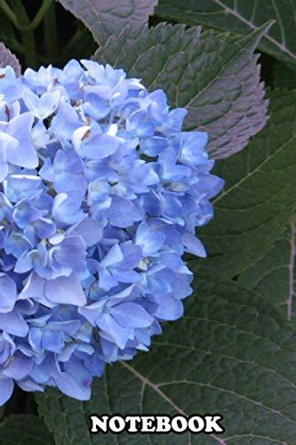 Tiffany Nature Rose - 4