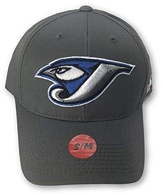 Fan Favorite Toronto Blue Jays S/M Hat Gray