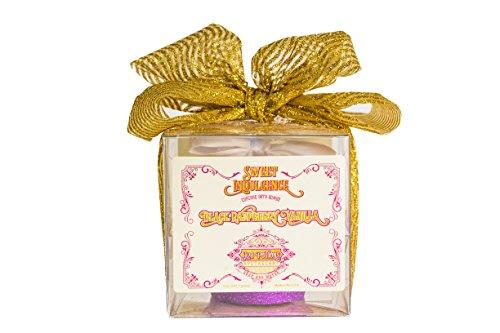 Raspberry Vanilla Cake - Large Cupcake Bath Bomb With Black Raspberry Vanilla Scent by H2O Potions Sweet Indulgence