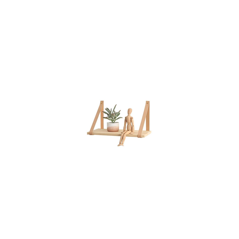 417ZXRcBauL