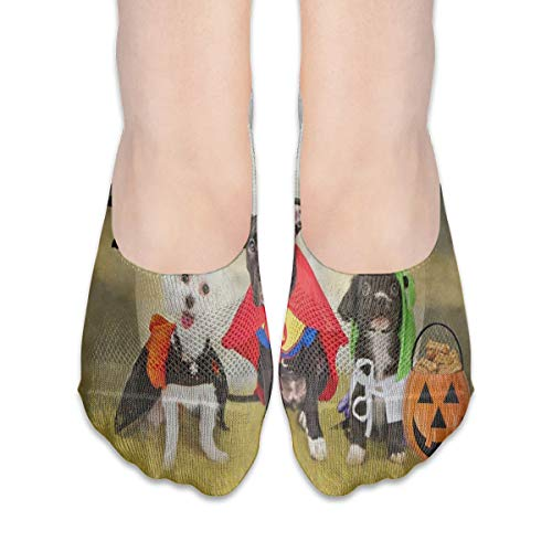 No Show Socks Hipster Puppy Dog Dressed in Halloween Costumes Fantastic Womens Low Cut Sock Casual Invisible Socks for -