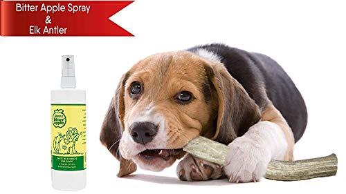 (Bitter Apple Spray for Dogs 16oz + Elk Antler Split Dog Chew | Dog Licking & Destructive Chewing Prevention)