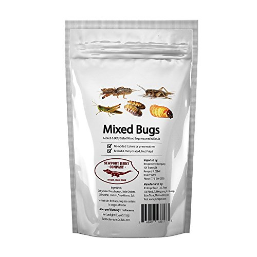 Edible Insects Bag of Mixed Edible Bugs. Grasshoppers, Crickets, Silk Worms and Sago Worms