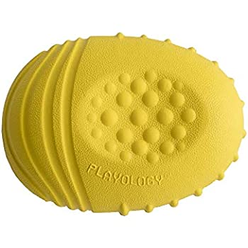 Pet Supplies : Playology Dual Layer Bone Scented Dog Toy