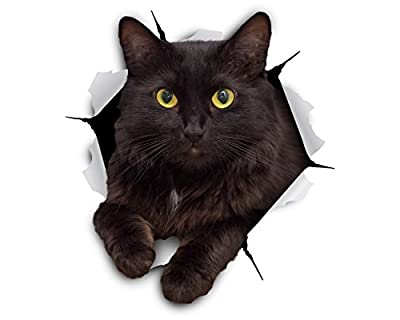 Winston & Bear 3D Cat Stickers - 2 Pack - Cheeky Black Cat Decals for Wall - Cat Lover Gifts - Stickers for Bedroom - Fridge - Toilet - Car - Retail Packaged