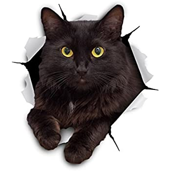 Winston & Bear 3D Cat Stickers | 2 Pack | Cheeky Black Cat Decals for Wall - Stickers for Bedroom - Fridge - Toilet - Car - Retail Packaged