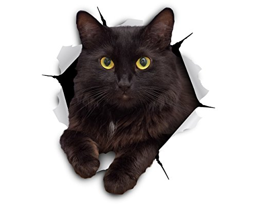 Winston & Bear 3D Cat Stickers - 2 Pack - Cheeky Black Cat Decals for Wall - Cat Lover Gifts - Stickers for Bedroom - Fridge - Toilet - Car -