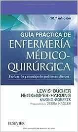 Guía practica de enfermería medico quirúrgica: Evaluación y abordaje de problemas clínicos
