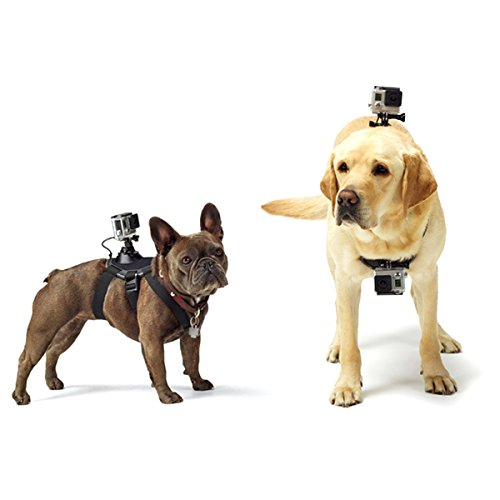 Action Harness (PULUZ Hound Dog Harness Adjustable Chest Strap Mount Belt Fetch Mount GoPro Hero 6/5 /5 Session /4 Session /4/3+ /3/2 /1, Xiaoyi Other Action Cameras (Dog Harness))