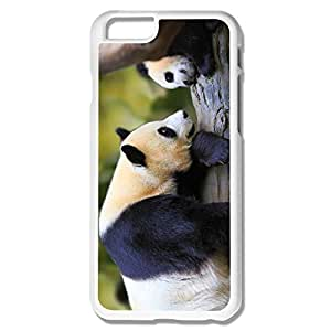 IPhone 6 Cases Panda Design Hard Back Cover Cases Desgined By RRG2G