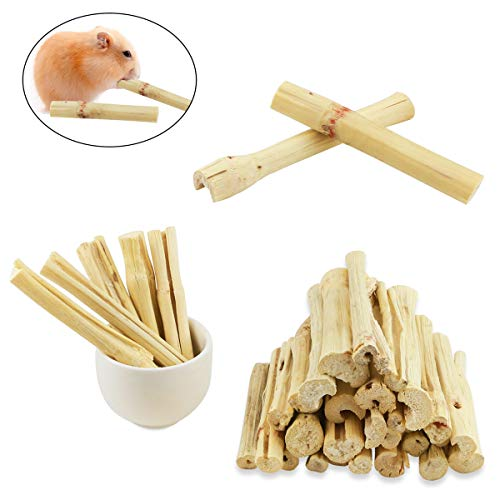 (Oruuum 500g Pet Molar Sweet Bamboo Snacks, Pet Chewing Toys Molar Sticks for Rabbits & Chinchillas & Guinea Pigs & Chinchillas & Hamsters & Squirrels and Other Small Animals.)