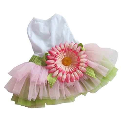 Dog Gauze Tutu Dress, Summer Skirt Pet Dog Cat Princess Clothes Lace Bowknot Dresses (M, White) (Dog Princess Tee)