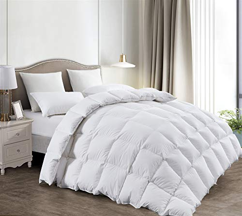 Luxurious All Seasons White Goose Down Comforter-Solid White Hypo-allergenic Duvet Insert 1000 Thread Count 750Fill Power 100% Cotton Shell Down Proof With Tabs (Queen, White / mediumweight Warmth)
