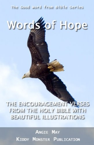 words of hope the encouragement verses from the holy bible with beautiful illustrations the
