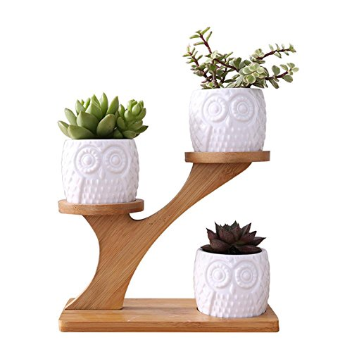 - White Succulent Plant Flower Pot Holder 3-Tier Bamboo Shelf Ceramic Owl Pattern Pot Treetop Shaped Bamboo Shelf Pot Planter Set Garden Pots