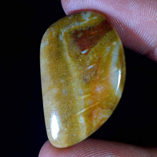 GEMSCREATIONS 29.55Ct.Natural Amazing Desgner Petrified Wood Jasper Fancy Cab Rare Gemstone