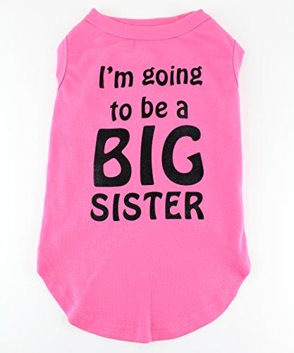 big sister shirt for dog - 6