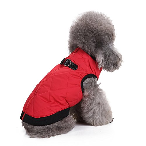 Red S (Back 9.84'' Chest 14.56'') Red S (Back 9.84'' Chest 14.56'') MDCT Dog Vest Jacket Coat Sweater with Zipper Closure and Leash Ring Pets Outdoor Winter Apparel