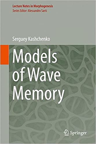 Book Models of Wave Memory (Lecture Notes in Morphogenesis)