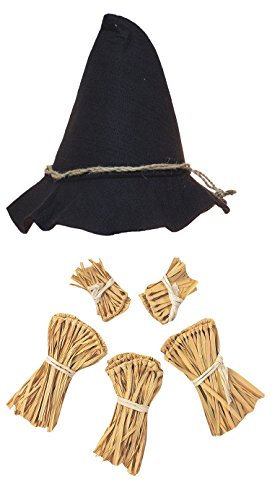 Straw Scarecrow Hat (Nicky Bigs Novelties Scarecrow Costume Kit, One Size)