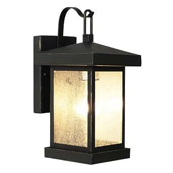 Trans Globe Lighting 45640 WB 1-Light Coach Lantern, Weather Bronze