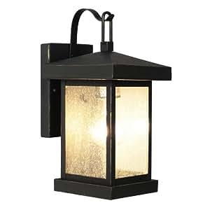 "Trans Globe Lighting 45640 WB Outdoor Santa Cruz 12"" Wall Lantern, Weathered Bronze"