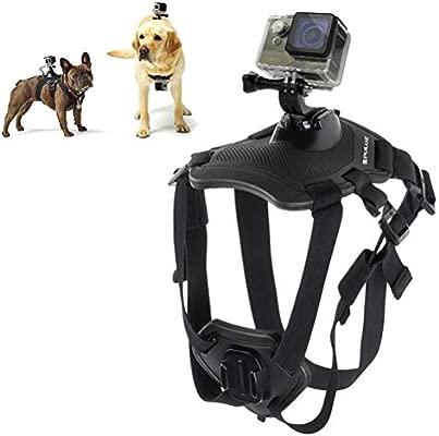 Mallalah - Arnés de Perro para GoPro Hero con Soporte de Pecho ...