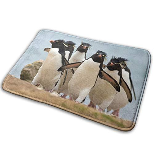 (Jingclor Welcome Doormat, Entrance Floor Mat Rug Indoor Outdoor Front Door Mat with Non-Slip Rubber Backing, Printing Doormats with Penguin Animals Print, 15.8''WX23.6''L)