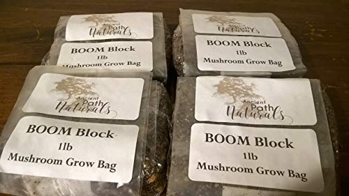 1lb Boom! Mixed Substrate All in one Mushroom Grow * Add Spores, Wait, Harvest! (3)