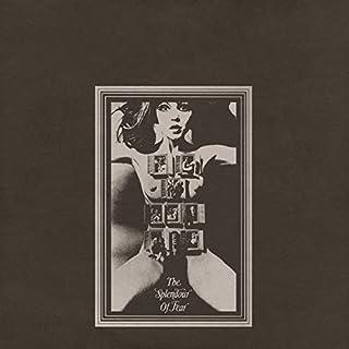Splendour Of Fear (Vinyl) by Felt (B077MT94DW) | Amazon price tracker / tracking, Amazon price history charts, Amazon price watches, Amazon price drop alerts