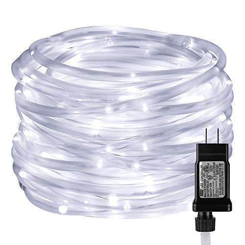 LE LED Rope Light with Timer, Low Voltage, 8 Mode, Waterproof, Daylight White, 33ft 100 LED, Indoor Outdoor Plug in Light Rope and String for Deck, Patio, Bedroom, Boat, Landscape Lighting and More (Rope Outdoor Lighting)