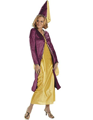 medieval-innocent-maiden-new-adults-costume-size-10-14