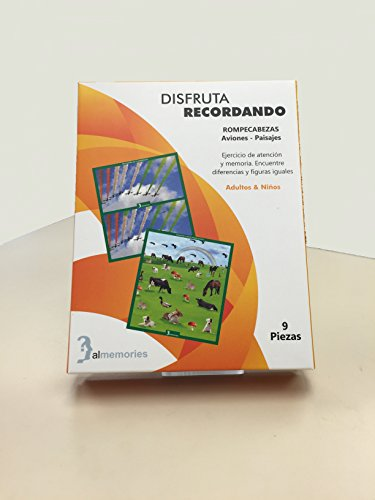 Two Sided cardboard Puzzle (9 Pieces) Airplane & landscape a.