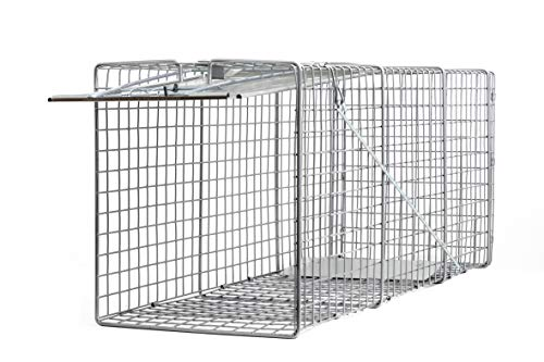 - Large One Door Catch Release Heavy Duty Cage Live Animal Trap for Gophers, Oppossums, Groundhogs, Beavers, and Other Similar Sized Animals, 32