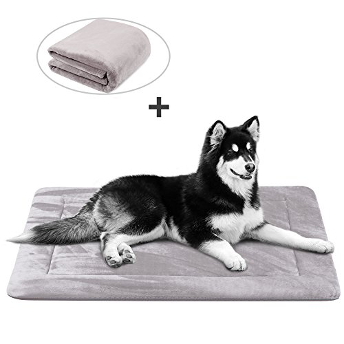 Dog Bed Mat Large Soft Crate Pad 42 In- 100% Machine Washable Anti-Slip Fleece Mattress Luxury Rich Color (42, Grey)