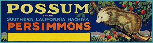 Possum Persimmon - Vintage Label (12x18 Art Print, Wall Decor Travel Poster)