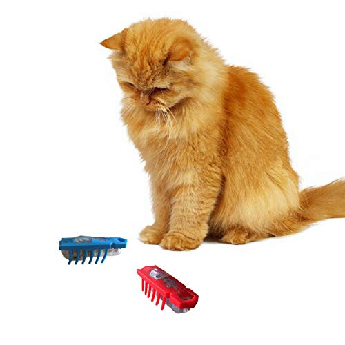 OUZIFISH Nano Robot Bug Cat Toys 2-Pack Electronic Interactive Toy Navigates Around Corner Keeps Indoor Cat Chasing Hunting, Battery Included - Plays Like a Real Bug