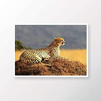 Cheetah Large Cat Wild Life Ikea Wall Frames Wall Art Frames