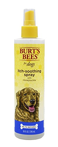 Dog Body Spray (Burt's Bees For Dogs Itch Soothing Spray with Honeysuckle | Best Anti-Itch Spray For All Dogs And Puppies With Itchy Skin)