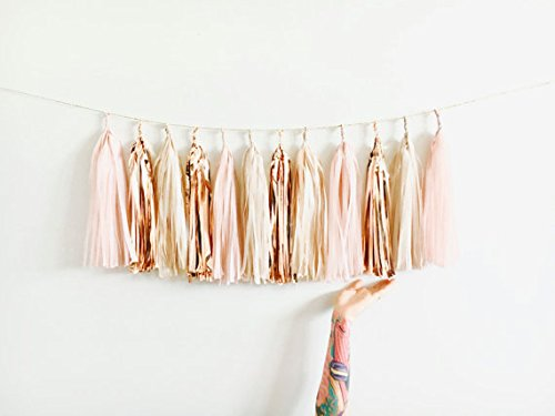 Blush,Rose Gold,Nude Shimmer Tassel Garland, 15 tassels and 2m jute twine-Baby Shower,Blush Wedding Decor,Party,Chair (Garland Blush)