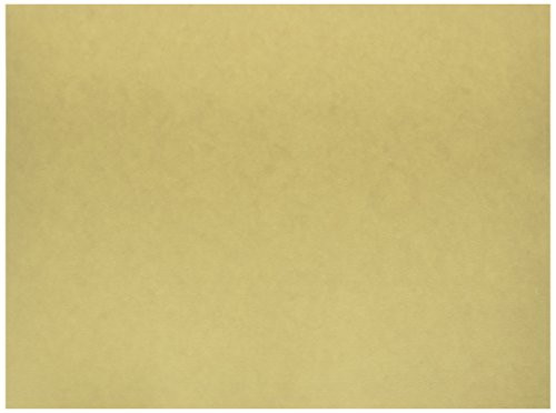 Pacon Medium Weight Tagboard, 9 x 12 Inches, Manila, 100 Sheets (5181)