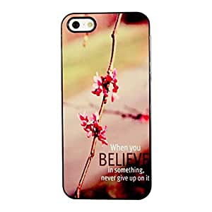 ZL Never Give Up Design Aluminum Hard Case for iPhone 5/5S