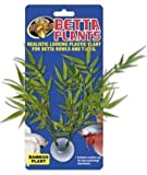 Zoo Med Laboratories AZMBP22 Betta Plant Bamboo